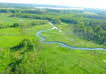 Rzeka Sawica i Saska